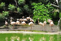 Parque Zoologico Nacional, Havana, Cuba