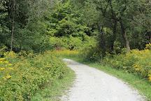Boyd Conservation Area, Woodbridge, Canada