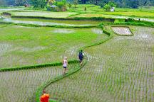 Authentik Bali - Day Tours, Ubud, Indonesia