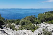 Olive Gardens of Lun, Lun, Croatia
