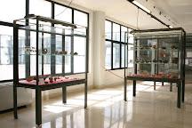 Museo Nazionale Archeologico di Egnazia 'Giuseppe Andreassi', Fasano, Italy