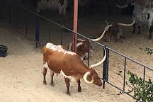 Livestock Exchange Building, Fort Worth, United States