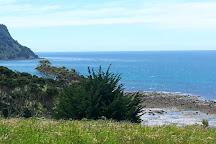 Fossil Bluff, Wynyard, Australia