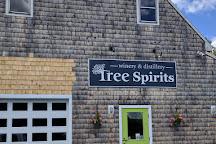 Tree Spirits, Oakland, United States