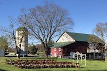 Faith like a Mustard Seed Farm, Leesburg, United States