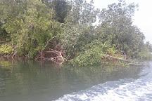 Pongara National Park, Libreville, Gabon