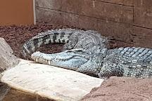 Crocodiles of the World, Brize Norton, United Kingdom