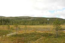 Fulufjallets National Park, Sarna, Sweden