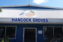 Hancock Groves, Dade City, United States