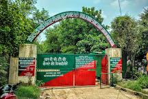 Okhla Bird Sanctuary, Noida, India