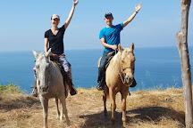 Lo De Marcos Horse Tours, Lo de Marcos, Mexico