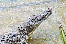 Koorana Crocodile Farm, Coowonga, Australia