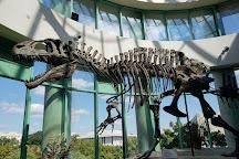 Museum of Natural Sciences, Belo Horizonte, Brazil