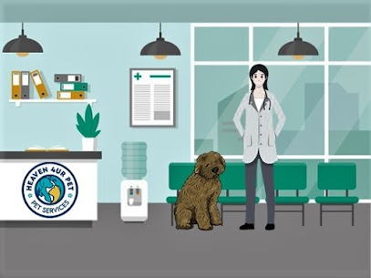 Veterinary Services in Woodville Hills, IN