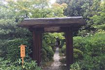 Urakuen Garden, Inuyama, Japan