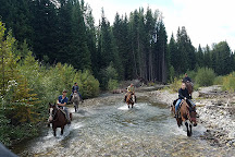 Swift Creek Outfitters & Teton Horseback Adventures, Moran, United States