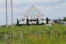 Vineyards Gourmet, Coloma, United States