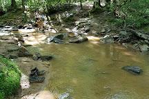 Emerald Hollow Mine, Hiddenite, United States