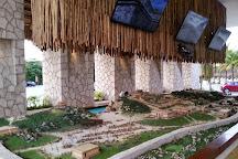 Delphinus Xel-Ha, Tulum, Mexico