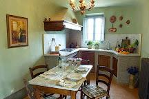 Guardastelle Vineyard, San Gimignano, Italy