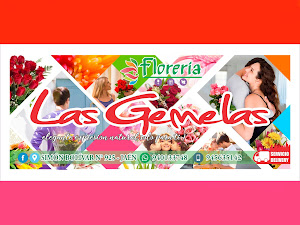 FLORERIA LAS GEMELAS 5