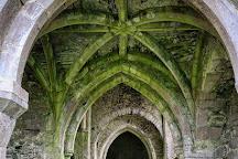 Kilcooley Abbey, Gortnahoe, Ireland