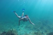 National Reef Park of Puerto Morelos, Puerto Morelos, Mexico