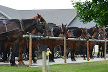 Amish and Mennonite Heritage Center, Berlin, United States