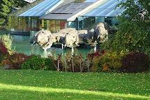 Red Bull Headquarters, Fuschl am See, Austria