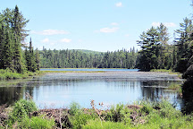 Lookout Trail, Algonquin Provincial Park, Canada