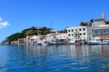 Grenada Seafaris, St. George's, Grenada