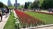 Платоновский сквер, проспект Революции на фото Воронежа