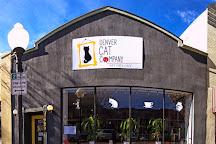 Denver Cat Company, Denver, United States
