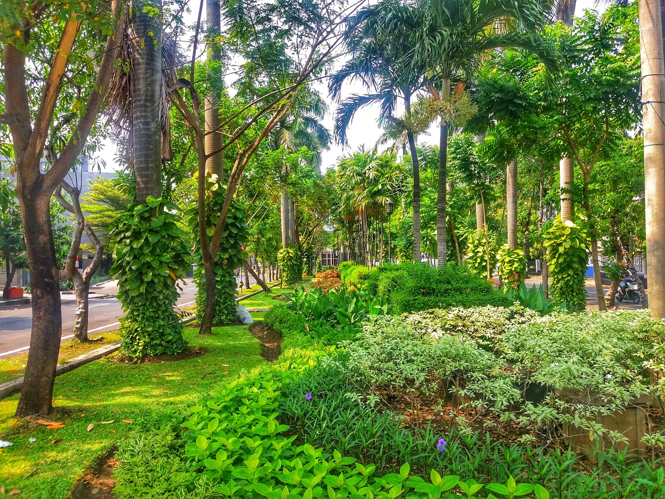 Taman M. Duryat