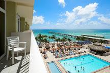 Coconuts Tiki Bar at Newport Beachside Hotel & Resort, Miami, United States