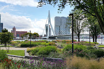 Erasmus Bridge, Rotterdam, The Netherlands