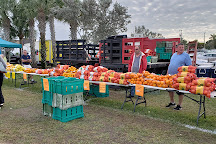 Marco Island Farmers Market, Marco Island, United States