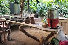 Eden Chocolate Tour, La Fortuna de San Carlos, Costa Rica