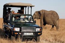 Outset Safaris, Nairobi, Kenya