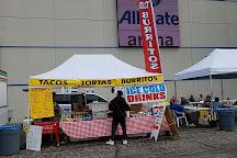 Wolff's Flea Market, Rosemont, United States