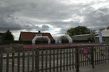The Web Adventure Park, York, United Kingdom