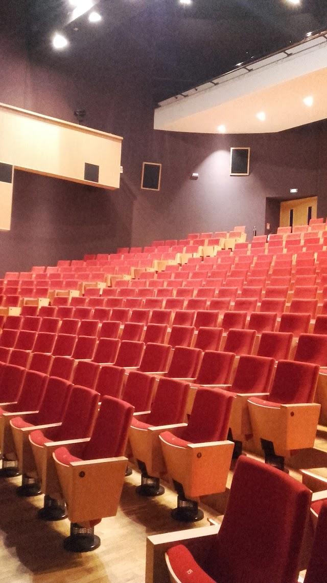 Cinema du Centre d'art et de culture