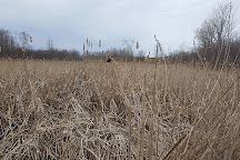 Laurier Woods Conservation Area, North Bay, Canada