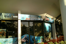 Sea Experience, Fort Lauderdale, United States