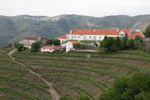 Quinta Santa Eufemia, Lamego, Portugal