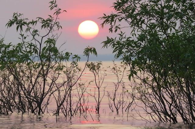 Brazil Amazon Tourism