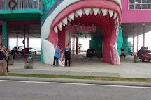 Sharkheads, Biloxi, United States