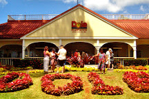 Oahu Grand Circle Island Tour, Honolulu, United States