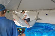 Playtime Family Fun, Ocean Shores, United States