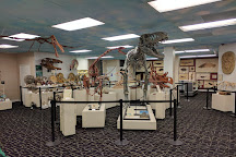 Roynon Museum of Earth Science and Paleontology, Escondido, United States